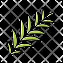 Palm Branch Palm Branch Icon
