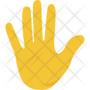 Palm of Hand Icon