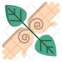 Palm Therapy Palm Therapy Icon