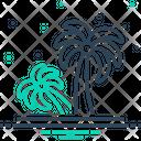 Palm Tree Palm Tree Icon