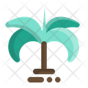 Palm Tree Coconut Tree Coconut Icon