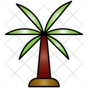 Palm Tree Palm Tree Icon