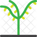 Palm Ecology Garden Icon
