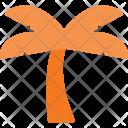 Palm Tree Icon