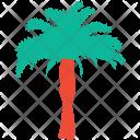 Palm Tree Nature Icon