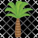 Coconut Beach Date Icon