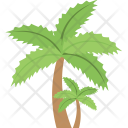 Palm Trees Tropical Icon