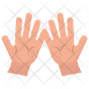 Palmistry Fortune Telling Fortune Lines Icon