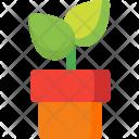 Palnt Icon