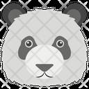 Panda Polar Bear Endangered Specie Icon