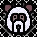 Panda Animal Animals Icon