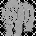 Panda Wild Nimal Icon