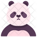 Panda Bear Animal Icon
