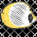 Panda Butterfly Fish Icon