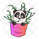 Panda In Pocket With Bamboo Sticks Icon