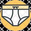 Pantie Underpants Undergarments Icon
