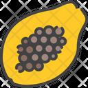 Papaya Berry Food Icon