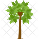 Papaya Tree Fruit Tree Wild Tree Icon