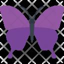 Papilio Ulysses Fly Icon