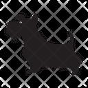 Papillon Dog Icon