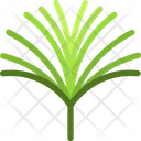 Papyrus Frond Icon