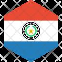Paraguay Flag World Icon