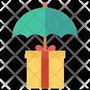 Protection Box Carton Icon
