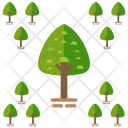 Park Tree Forest Icon