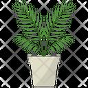Parlor palm Plant Icon