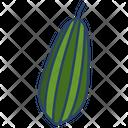 Parmal Icon