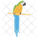 Parrot Bird Cockatoo Icon