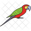 Bird Colorful Bird Parrot Icon