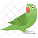 Parrot Cockatoo Macaw Icon