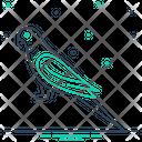 Parrot Lovebird Pet Icon
