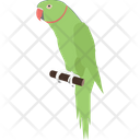 Parrot Pet Bird Icon