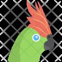 Parrot Green Bird Icon