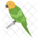 Parrot Bird Pet Icon