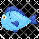 Parrotfish Blue Scarus Icon