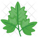 Parsley Icon