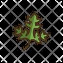 Parsley Parsley Leaf Leaf Icon