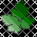Parsley Icon