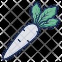 Parsnip Radish Vegetable Icon