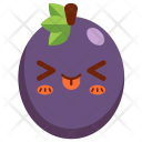 Passion Fruit Fruit Icon
