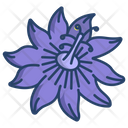 Passion Flower Flowers Icon