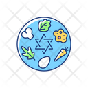 Passover Seder Plate Icon