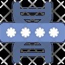 Genome Code Password Icon