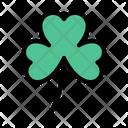 Patricks Leaf Shamrock Icon