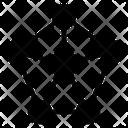 Network Star Diagram Icon