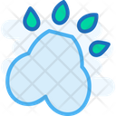 Foot Printm Paw Foot Print Icon