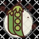 Pea Vegetarian Indian Icon